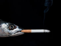 Fish smoking Royalty Free Stock Images