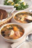 Fish solyanka. Solyanka, Russian soup with salmon and olives Royalty Free Stock Images