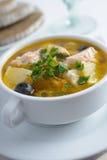 Fish solyanka. Solyanka with salmon in a white bowl Royalty Free Stock Images