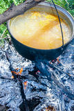 Fish soup boils in cauldron. Food background Royalty Free Stock Image