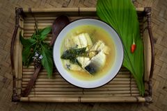 Local food of Borneo. Fish soup with Borneo traditional herbs and spices royalty free stock images