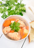 Fish soup with salmon Royalty Free Stock Photography