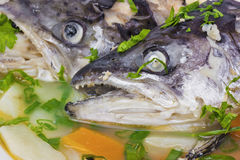 Fish soup from salmon heads Stock Image