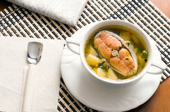Fish soup with  trout Stock Images