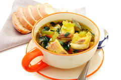 Fish soup with vegetables on a white background. Royalty Free Stock Photos