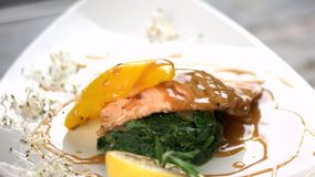 Fish with soy caramel sauce. Tasty dish, grilled salmon stock video
