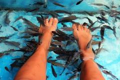 Fish Spa Huidbehandeling in Thailand, Bangkok Royalty-vrije Stock Fotografie