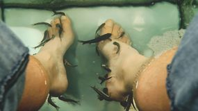 Fish Spa Pedicure, Man Voeten van Rufa Garra Nibble Skin Off royalty-vrije stock afbeelding