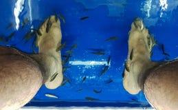 Fish Spa pedicure treatment. stock photos