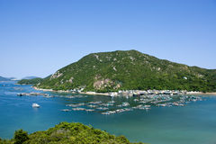 Fish spawning grounds in Hong Kong. Largest fish spawning grounds in Hong Kong, Lamma Island ,Sok Kwu Wan Royalty Free Stock Image