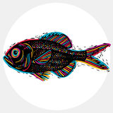 Fish species, vector marine fauna symbol. Hand drawn silhouette Royalty Free Stock Photos
