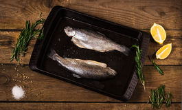 Fish with spices and herbs Royalty Free Stock Photos