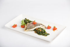 Fish and spinach. With tomatoes and fresh basil Stock Photography
