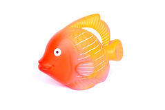 Fish squeaky toy. An orange rubber fish squeaky toy for kids to play. Image isolated on white studio background Stock Photography