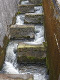 Fish stairs. In the river at hydroelectric dam Royalty Free Stock Photography