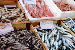 Fish stall Royalty Free Stock Photography