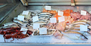 Fish stall. Market stall with freshly caught fish assortment Stock Photography