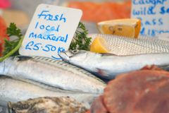 Fish Stall. Fish on a market fish stall Stock Image