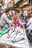 Fish stall at the Chawri Bazar in Delhi, India Stock Photos