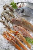 Fish stall on crushed ice. Supermarket, fish department. Presentation sea food on ice royalty free stock photos