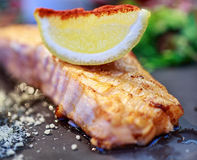 Fish steak. With lemon and spices Stock Image