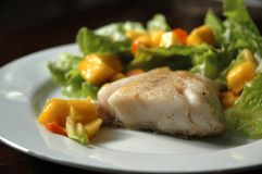 Fish Steak with Ripe Mango Salad. Fish steak with baby carrots, green oak and ripe mango salad in Japanese dressing Stock Photo