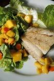 Fish Steak with Ripe Mango Salad Royalty Free Stock Images