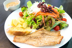 Fish steak with salad Royalty Free Stock Photography