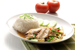 Fish and Steamed Rice. Stock Image