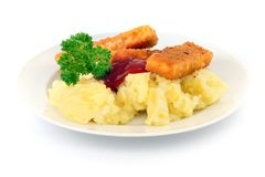 Fish stick. Royalty Free Stock Image