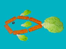 Fish of sticks. Fish formed by fish sticks, lettuce leaves and a black olive Stock Images