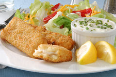 Fish sticks and salad Stock Images