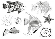 Fish. Stylized fish with different texture, vector illustration Stock Images