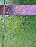 Fish swim in same direction. In shallow abstract green water concrete canal abstract for following, group pressure, dependencies concepts. Purple complimentary stock image