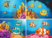 Fish swim under the ocean. Illustration Royalty Free Stock Image