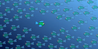 Fish Swimming Against The Tide Comic. Swimming against the tide - one brave, daring fish swims in the opposite direction to the school of fish - symbol for Royalty Free Stock Photos