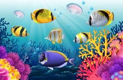 Fish swimming under the sea. Illustration Stock Photo
