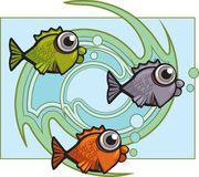 Fish Swirl. Three different color fish in front of a swirling water design Royalty Free Stock Image