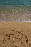 A fish symbol drawn in the sand Royalty Free Stock Image