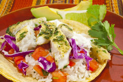 Fish Tacos Meal Close-up. A close-up photo of a small fish taco plate with lime and avocado royalty free stock photos
