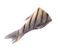 Fish tail. Stock Photo