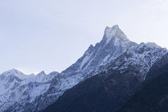 Fish Tail or Mt.Machhapuchhare in Nepal Stock Photo