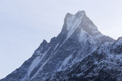 Fish Tail or Mt.Machhapuchhare in Nepal Royalty Free Stock Photos