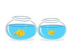 Fish in tank. Illustration of fish in tank on white background Stock Photography