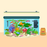 Fish tank, aquarium with water, animals, algae, corals, equipment. Fish tank, aquarium with water, sea tropical animals, algae and underwater plants, corals Royalty Free Stock Image
