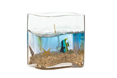 Fish tank candle. On isolated white background stock photo