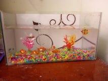 Fish tank. Gold Fish tank for samples. Samll stock photos