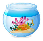 Fish tank. Illustration of a fish tank and seahorses Royalty Free Stock Image
