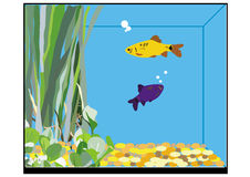 A fish tank Stock Image