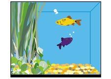 A fish tank Stock Image
